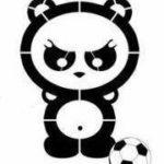 FC Panda